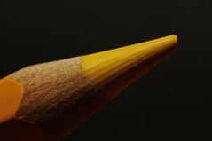 Buntstift (steffen.stade) Tags: buntstift crayon makro macro