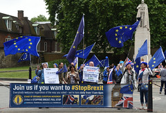 Img634679nxi_conv (veryamateurish) Tags: london westminster parliament housesofparliament abingdonstreet demonstration protest eu europeanunion brexit flags