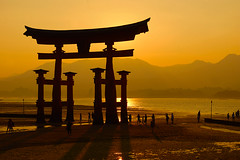 Miyajima (murtica27) Tags: japan nippon miyajima tori shrine hiroshima meer ocean sunset sunrise evening red light licht abend dämmerung sky sony alpha