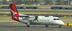 VH-SCE | QantasLink | QF2181 | MRZ - SYD | Bombardier Dash 8 Q300 | Sydney Kingsford Smith Airport | (SYD/YSSY) (bukk05) Tags: sydneykingsfordsmithairport bombardierdash8q300 dash8 vhsce qantaslink mrz syd qf2181 moree sydney sydyssy yssy dehavillandcanadadash8 bombardieraerospace bombardier prattwhitneycanadapw100 prattwhitney turboprop wing qantas qantasfrequentflyer qantasfirstlounge qantaspoints theqantasclub explore export engine runway tamron tamron16300 travel tourist tourism international oneworld photograph photo passenger plane aeroplane holiday flickr flight fly flying sky 2018 australia air airport aircraft airliner aviation airportgraphy airline flyingkangaroo thespiritofaustralia autumn canon60d canon nsw newsouthwales birdsville