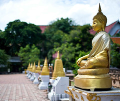 Chiang Mai, Thailand (Kirk Stauffer) Tags: kirk stauffer photographer nikon d4 adorable amazing awesome beautiful charming fabulous pretty stunning wonderful outdoors outside tropical rain monsoon temple shrine gold gautama buddha