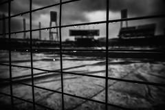 monochrome rain (Sign-Z) Tags: bw rain nikon d4s 2470mmf28g stadium hiroshima 広島 マツダスタジアム モノクローム 白黒 雨