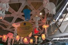 plastic displays... (3/4) (steveleenow) Tags: vancouver vancouverbc vancouverbccanada vancouverbritishcolumbia vancouverbritishcolumbiacanada britishcolumbia canada vancouveraquarium aquarium plastic plastics waste junk trash