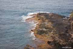 Playa de las Américas, Тенеріфе, Канарські острови  InterNetri  788