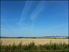 Day 188 (kostolany244) Tags: 3652018 onemonth2018 july day188 772018 kostolany244 samsunggalaxys5 europe germany geo:country=germany month field sky 365the2018edition