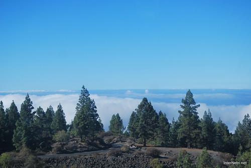 Понад хмарами, Тенеріфе, Канарські острови  InterNetri  012