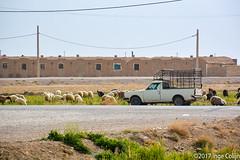 20180331-_DSC0368.jpg (drs.sarajevo) Tags: farsprovince ruraliran iran arsanjan