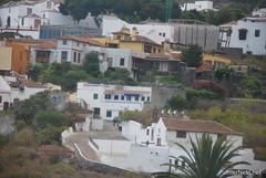 Ікод-де-лос-Вінос, Тенеріфе, Канарські острови  InterNetri  144
