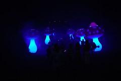 Mushrooms (Nathalie_Désirée) Tags: magic mushroom mushrooms fairytale enchanted forest tree garden park killesberg badenwuerttemberg lichterfest party event celebration light lighteffect darkness people crowd evening night nocturn canoneos600d canon35mm f20 figure figures stuttgartnord stuttgart summer july fantasy fantastic imagination magicworld blue bluetiful bluelight weekend