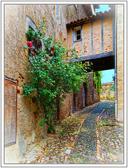 Les rues de Figeac - Le rosier rouge - In Explore (GilDays) Tags: france quercy midipyrénées lot figeac olympus olympusomdem1 em1 massifcentral departementdulot espritlot tourismelot so0518 vert green occitanie rue street allée alley ruelle chemin bâtiment mur wall rose rosier rosebush rouge red fenêtre window colombage timbered architecture porche explore explorer