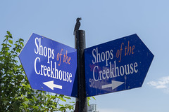 Shops of the creekhouse (_K1_1844) ([Rossco]:[www.rgstrachan.com]) Tags: britishcolumbia canada granvilleisland vancouer holiday mun publicmarket vacation vancouver ca