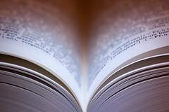 Line Symmetry (Hans Lambregts) Tags: flickr macromondays toevoegenaanslimmeverzamelingflickr linesymmetry book books pages