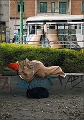 Cane e padrone (Aellevì) Tags: cane dorme plaid berretto senzatetto muro muretto fedeltà uguale uguali fedele amorevero