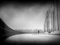 ..coldness.. (frank_hb) Tags: bw black blackandwhite blackwhite street streetphotography silhouette schwarz wedel
