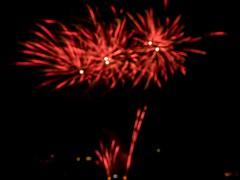 P7020124 (Copy) (pandjt) Tags: ottawa canadaday beaconhill beaconhillcommunityassociation ontario fireworks loyolapark