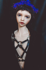 underworld princess († Jack †) Tags: bjd abjd doll dimdoll dimdollannabeth