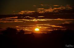 """Shadows in the Moonlight"" - Garry Point Park (Explored) (SonjaPetersonPh♡tography) Tags: steveston stevestonfishingvillage sunset stevestonvillage garrypointpark garrypoint sky nikon nikond5300 silhouettes nightphotography nightscenes nightsky richmond bc britishcolumbia bcparks shadows moonlight shadowsinthemoonlight"