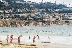 RAT Beach (Chris Protopapas) Tags: redondo california torrance losangeles telephoto beach surf sony pentax redondobeach ratbeach burnoutbeach plage surfing bikini bluff seaweed sand palosverdes