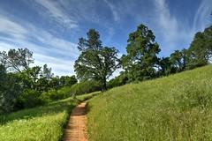 Trail near Folsom (trailwalker52) Tags: california sacramento northerncalifornia trail forest hiking hiker bluesky calmtrail pleasant