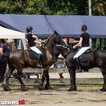 Paardenvriend (72 van 141) thumbnail