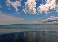 Ostsee (Wunderlich, Olga) Tags: ostsee insel rügen mecklenburgvorpommern vogel enten spiegelung blau wolken himmel muscheln