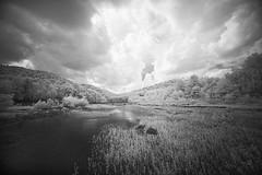 Infrared on the River (DRCPhoto) Tags: irconverteddslr canon5d digitalinfrared digitalir sigma1224mmdghsm cheatriver westvirginia