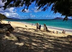 Kailua Beach Park (jcc55883) Tags: kailua kailuabeachpark beach beachscene ocean pacificocean oahu windwardoahu windwardside hawaii shore shoreline beachgoers luckywelivehawaii ipad