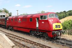 D821 BR Class 42 'Greyhound' (Roger Wasley) Tags: d821 greyhound br class42 highley station shropshire svr severnvalleyrailway trains british railways heritage diesel locomotive