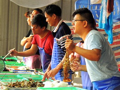 Market (markb120) Tags: market mart emporium rialto fish sea food seafood dealer trader vendor tradesman seller trafficker man person human individual humanbeing fellow male
