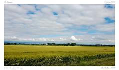 Paysages d'Auvergne : La limagne (BerColly) Tags: france auvergne puydedome paysage landscape champs fields ciel sky nuages clouds samrtphone mainlevée handheld bercolly google flickr