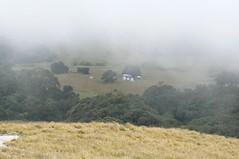 Muretha Plateau - Namuli