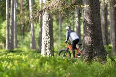 on a mtb in forest 4 (VisitLakeland) Tags: finland lakeland mtb summer biking cycling forest kesä luonto maastopyörä maastopyöräily nature outdoor