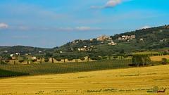 A-LUR_6403 (OrNeSsInA) Tags: panicale paciano trasimeno umbria italia italy natura panorami landescape