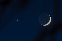 Venus comes dangerously close to the Moon (beltz6) Tags: moon venus crescentmoon sky skies goleta night evening dusk twilight lunar