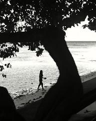 Controluce filippino (oiZox) Tags: chiaroscuro contraluz controluce blancoynegro blackandwhitephotography blanconegro blackandwhite monochrome mono silhouette siquijor philippines asia sanjuan people human streetphotagraphy streetphoto