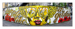 Street Art (Carleen De Sözer & Candie Bandita), East London, England. (Joseph O'Malley64) Tags: carleendesözer candiebandita candie streetartists streetart urbanart publicart freeart graffiti eastlondon eastend london england uk britain british greatbritain art artists artistry artwork mural muralists wall walls wallmural panorama panoramic brickwork bricksmortar cement pointing staircase steelwork airconditioners steelsecurityspikes pavement alleyway businesspremises restaurant buddleia victorianbuilding victorianstructure door woodendoor doorway entrance exit urban urbanlandscape aerosol cans spray paint freehand fujix fujix100t accuracyprecision