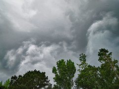 Storm Clouds Above The Trees. (dccradio) Tags: lumberton nc northcarolina robesoncounty outdoor outdoors outside nature natural cloud clouds overcast storm stormy stormclouds expectingrain greysky greyclouds graysky grayclouds summer summerstorm thunderstorm sky landscape canon powershot elph 520hs tree trees leaf leaves foliage treebranch treebranches treelimb treelimbs branch branches backyard wooded woods forest