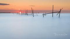 What's the catch (Ellen van den Doel) Tags: 2018 zonsondergang sunset juli water harbor outdoor zee sea stellendam landschap fisher net sky seascape lucht landscape poles haven