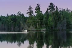 Blue Hour paddle (Jackx001) Tags: 2018 algonquinpark bushcraft camping canada canadaday fishing jacknobre july nature ontario tonyviclicky wetlake canoe lake landscape