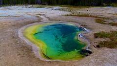 Biscuit Basin 3 (Chief Tendoy) Tags: yellowstonenationalpark geyser