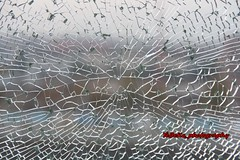 tempered and laminated glass (Kirlikedi) Tags: tempered laminated pine sturdy resistant crack broken cracked membrane vein tissue background regular abstract divided area industry absorbed strength structure separate frangible window transparent look fragile sensitive sensitivity