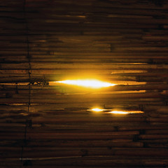 Love for the light (Robyn Hooz) Tags: padova argini luce sole sun light fence dark shadow details abstract astratto bambu you