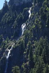 Waterfall (Zach Hawn) Tags: mountrainier mountainwildlife wildlife hiking nps nationalparkservice pacificnorthwest pnw wander mrnp mora nationalpark findyourpark outdoors washington western piercecounty westsideroad animal