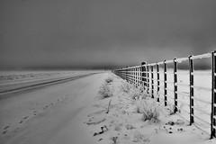 Confluence (Fueguino01) Tags: grey gris nostalgia solitude soledad invierno winter camino abstract road patagonia snow nieve patagoniasnow bw