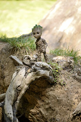 root (Vlastelin Nichego) Tags: toys hottoys groot babygroot