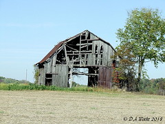 Well Ventilated (Picsnapper1212) Tags: browncounty ohio barn disrepair farm agriculture scene appalachia october 2007