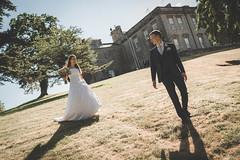 JS: Stroll (masterglass) Tags: walking grounds ston baston park wedding couple bride groom smiling hillside