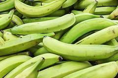 Bananas 05-19-18 (MelenaMe) Tags: bananas banana green greenbananas fruit edible