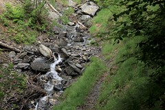 torrent (bulbocode909) Tags: valais suisse mex torrents eau montagnes nature forêts arbres sentiers printemps vert rochers