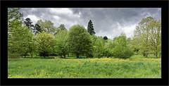 Paysage orageux... (Jean-Louis DUMAS) Tags: nature paysage landscape landscapesdreams vert green arbre tree ciel sky cloud nuage